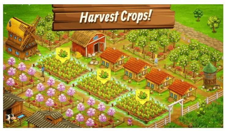 Big Farm