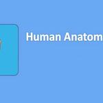 Human Anatomy Atlas 2021 APK